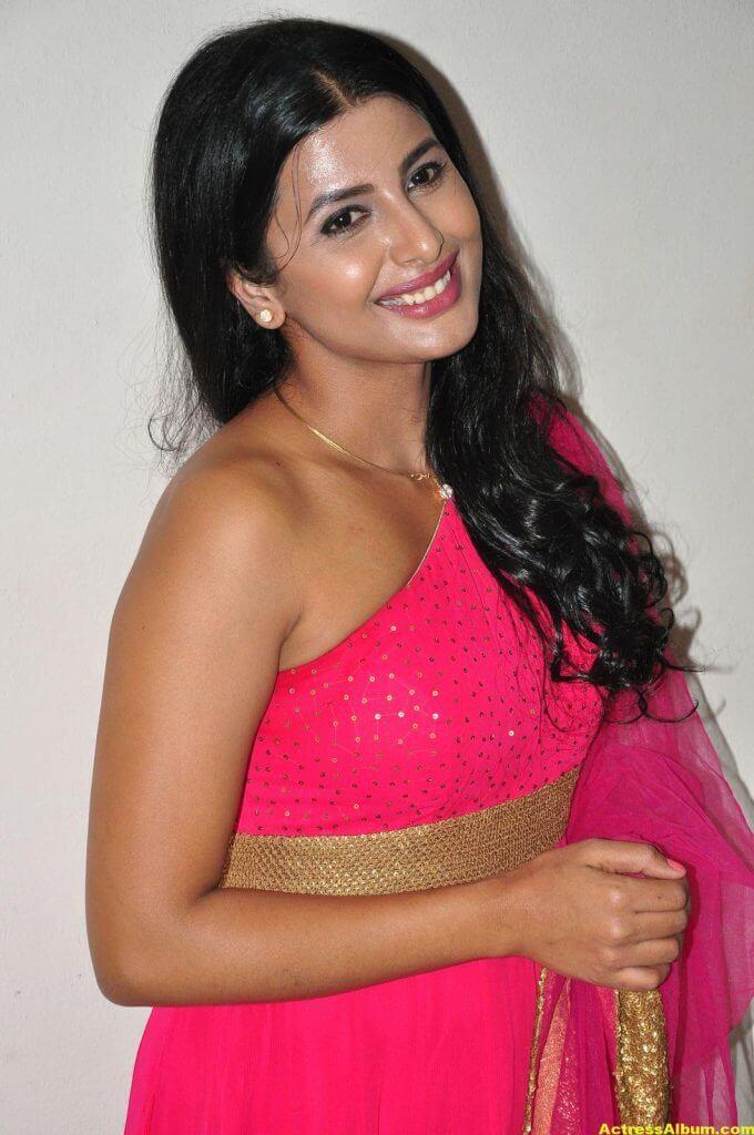 Rajshri Ponnappa Hot Stills In Pink Dress 3