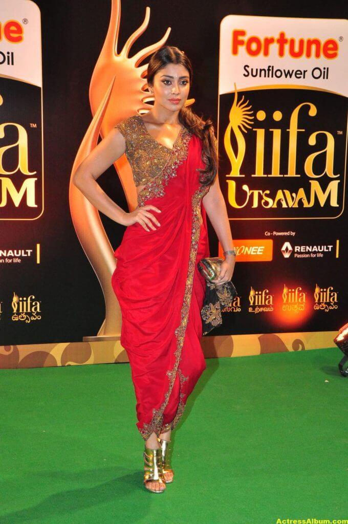 Mallanna Movie Actress