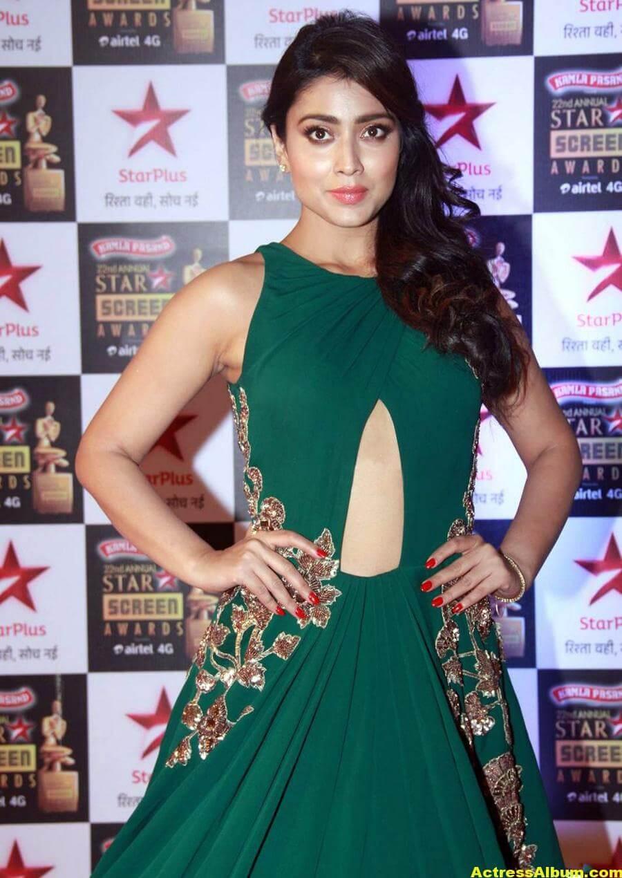 Shriya Saran Stills In Green Dress At Star Screen Awards