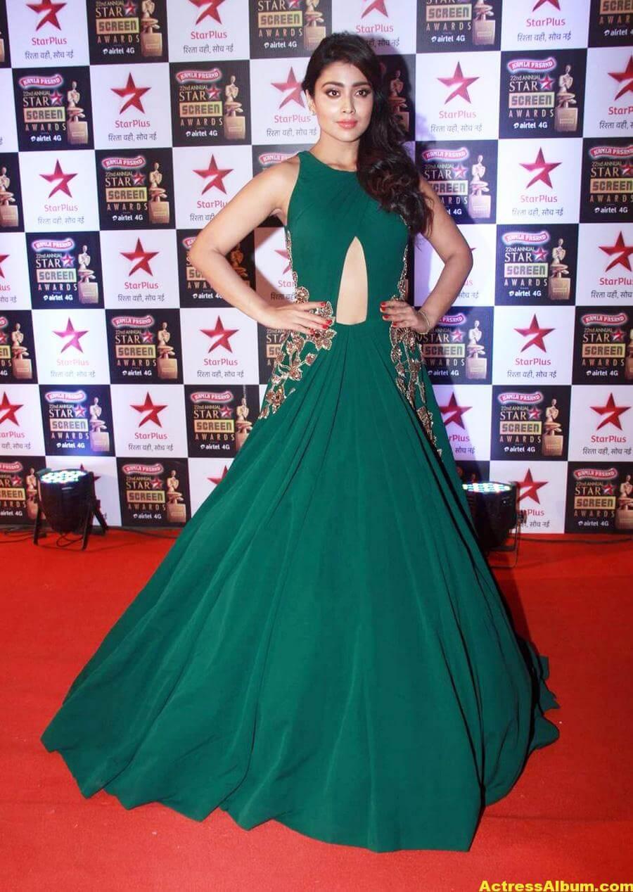 Shriya Saran In Green Dress