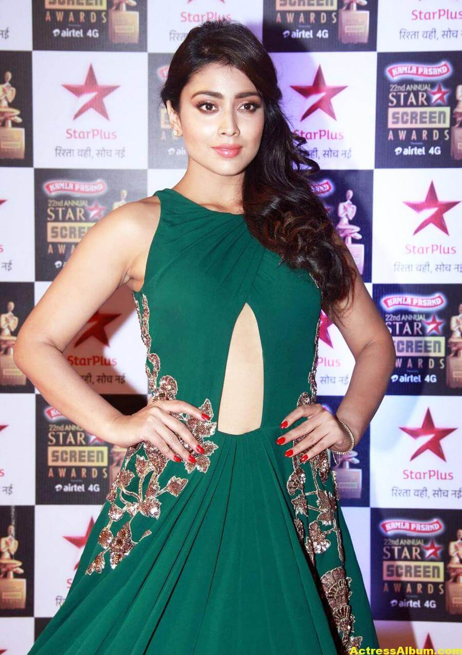 Shriya Saran Stills In Green Dress At Star Screen Awards 5