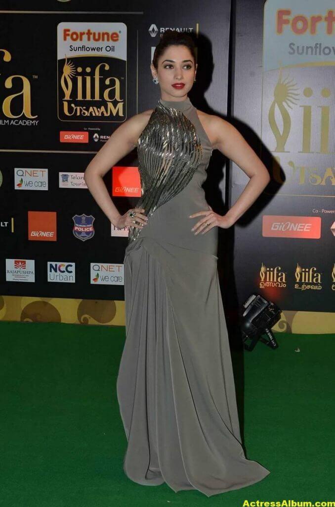 Tamanna Hot Stills in Grey Dress