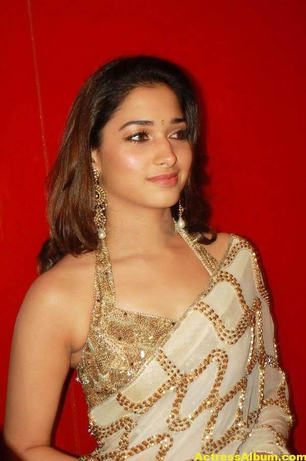 Tamannaah Hot Photos In Gold Saree 1