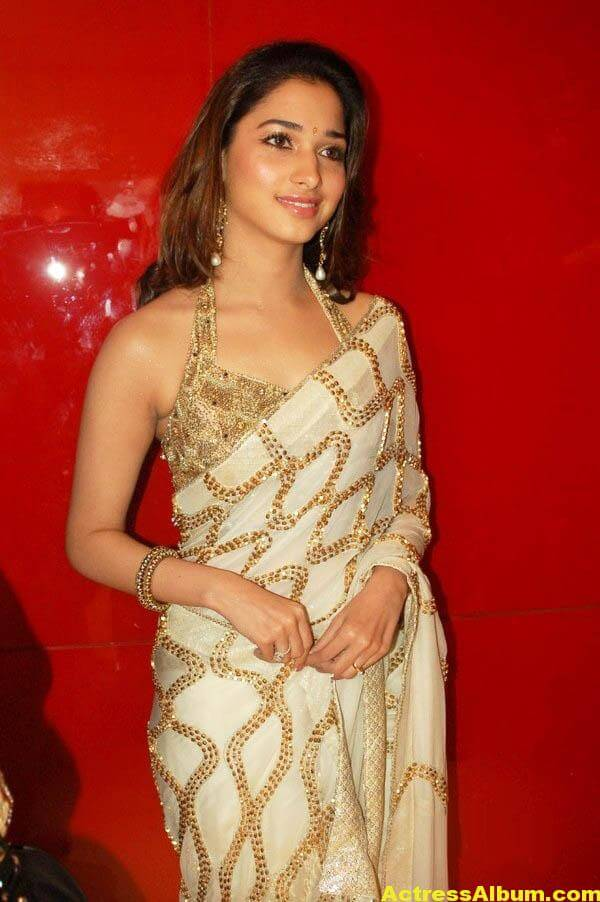 Tamannaah Hot Photos In Gold Saree 2