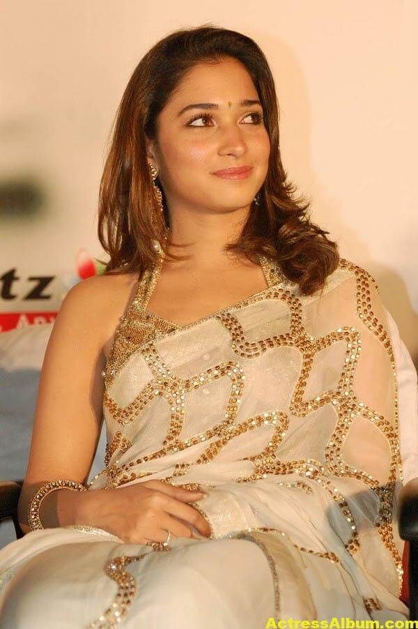 Tamannaah Hot Photos In Gold Saree 3