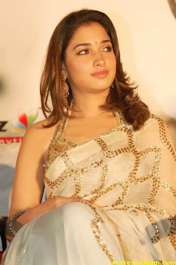 Tamannaah Hot Photos In Gold Saree 4