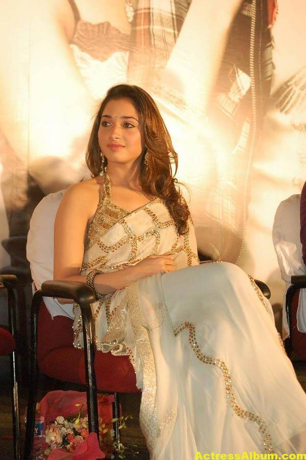 Tamannaah Hot Photos In Gold Saree 5