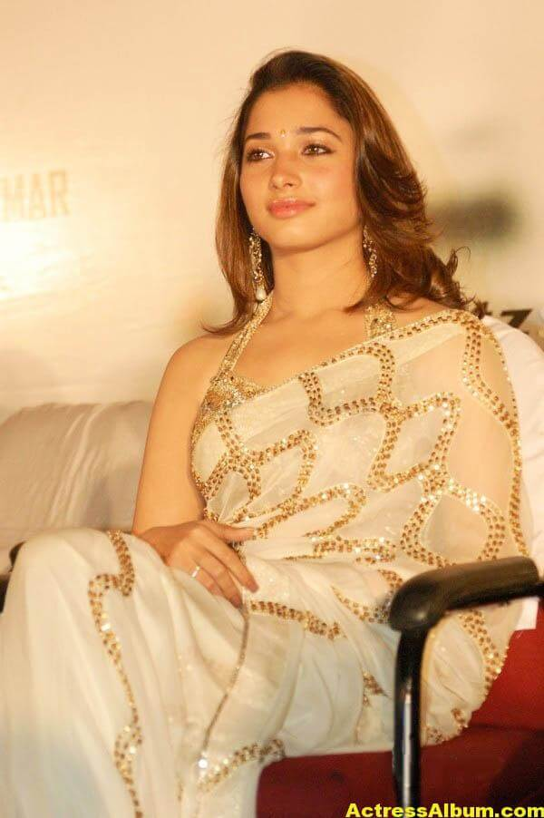 Tamannaah Hot Photos In Gold Saree 6
