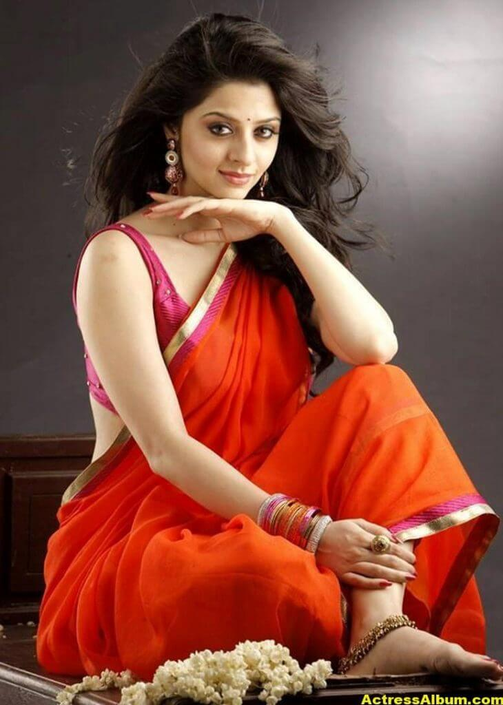 Vedika Hot Navel Show Stills in Orange Saree 1