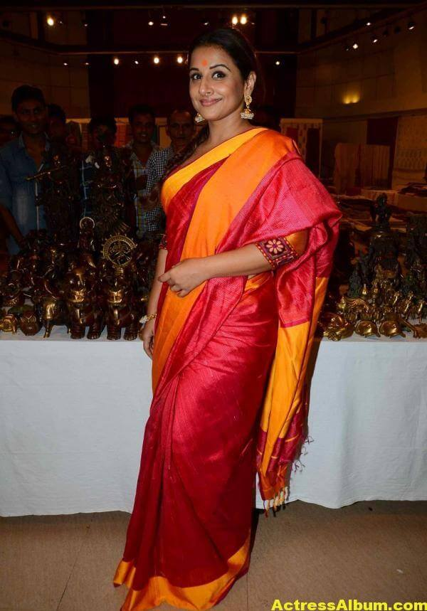 Vidya Balan Very Hot Beautiful Photos In Red Saree 2