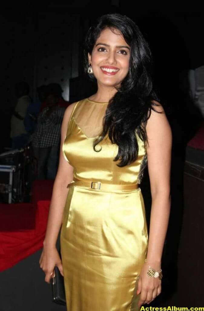 Vishakha Singh Hot Photos In Yellow Dress (3)