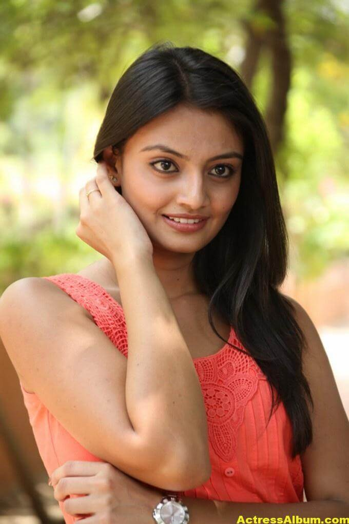 Nikitha Narayan Latest Cute Photo Shoot In Pink Dress 4
