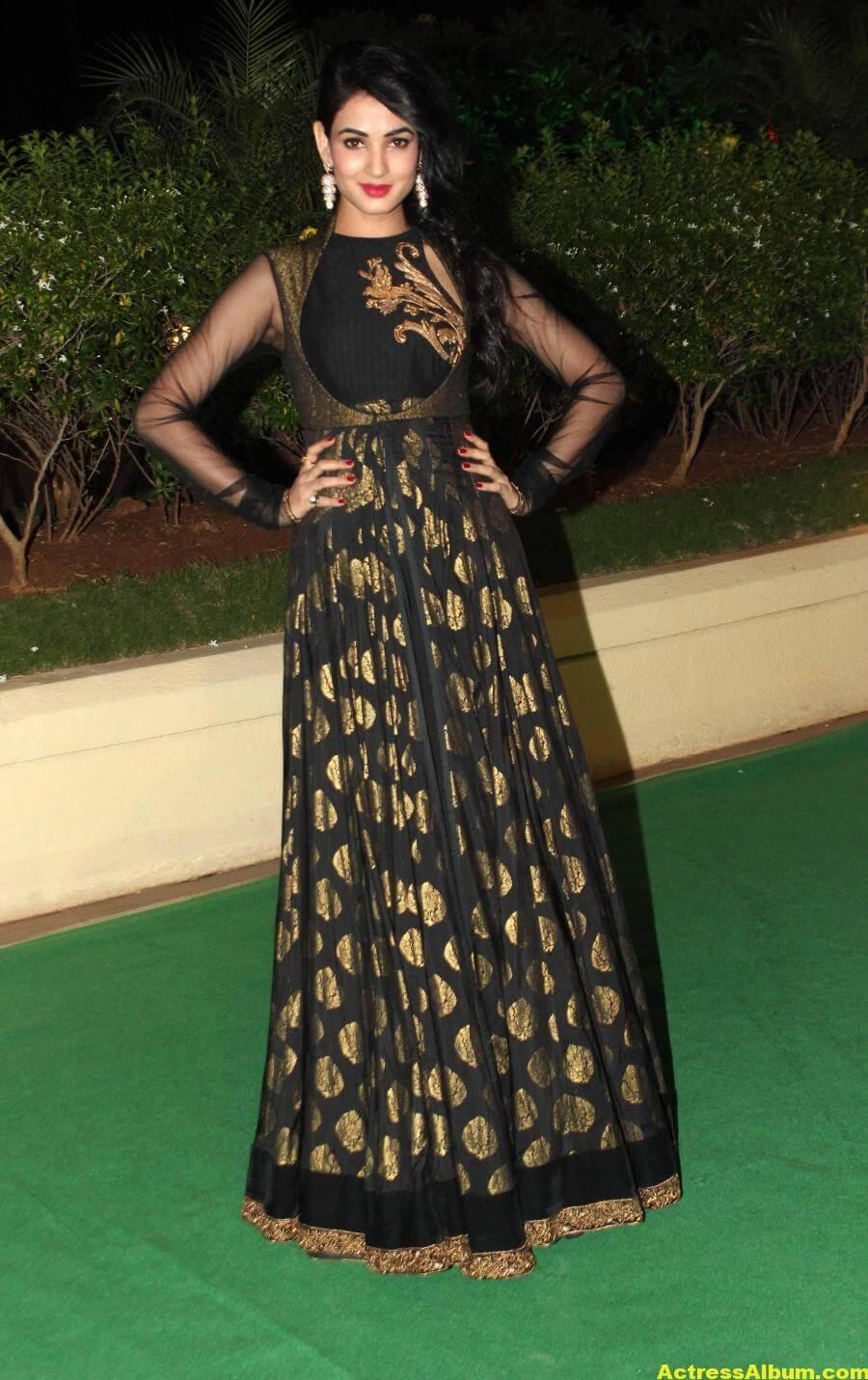 Sonal Chauhan Hot Photos At Wedding Reception In Black Dress 4
