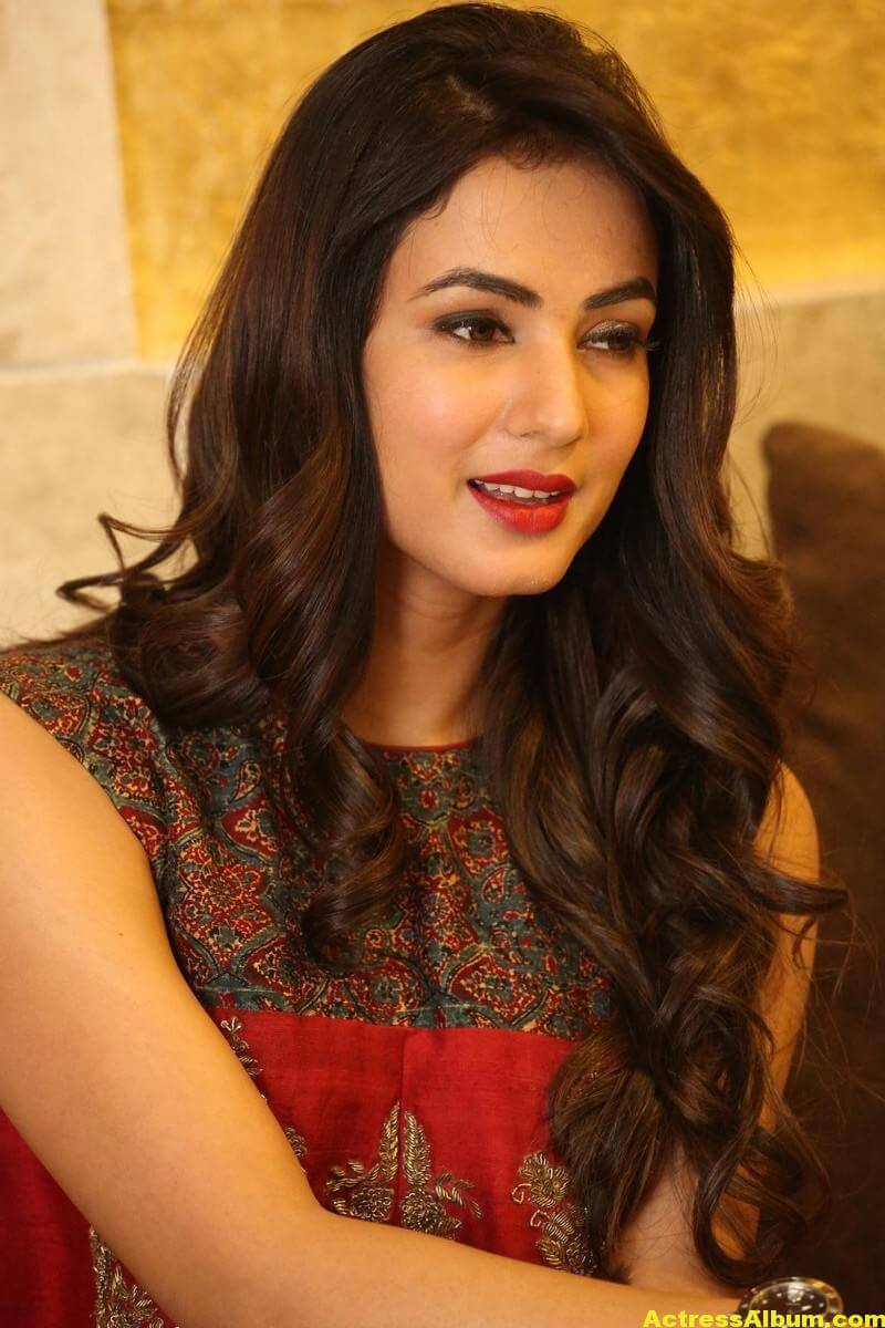 Sonal Chauhan Latest Stills In Beautiful Red Dress 3