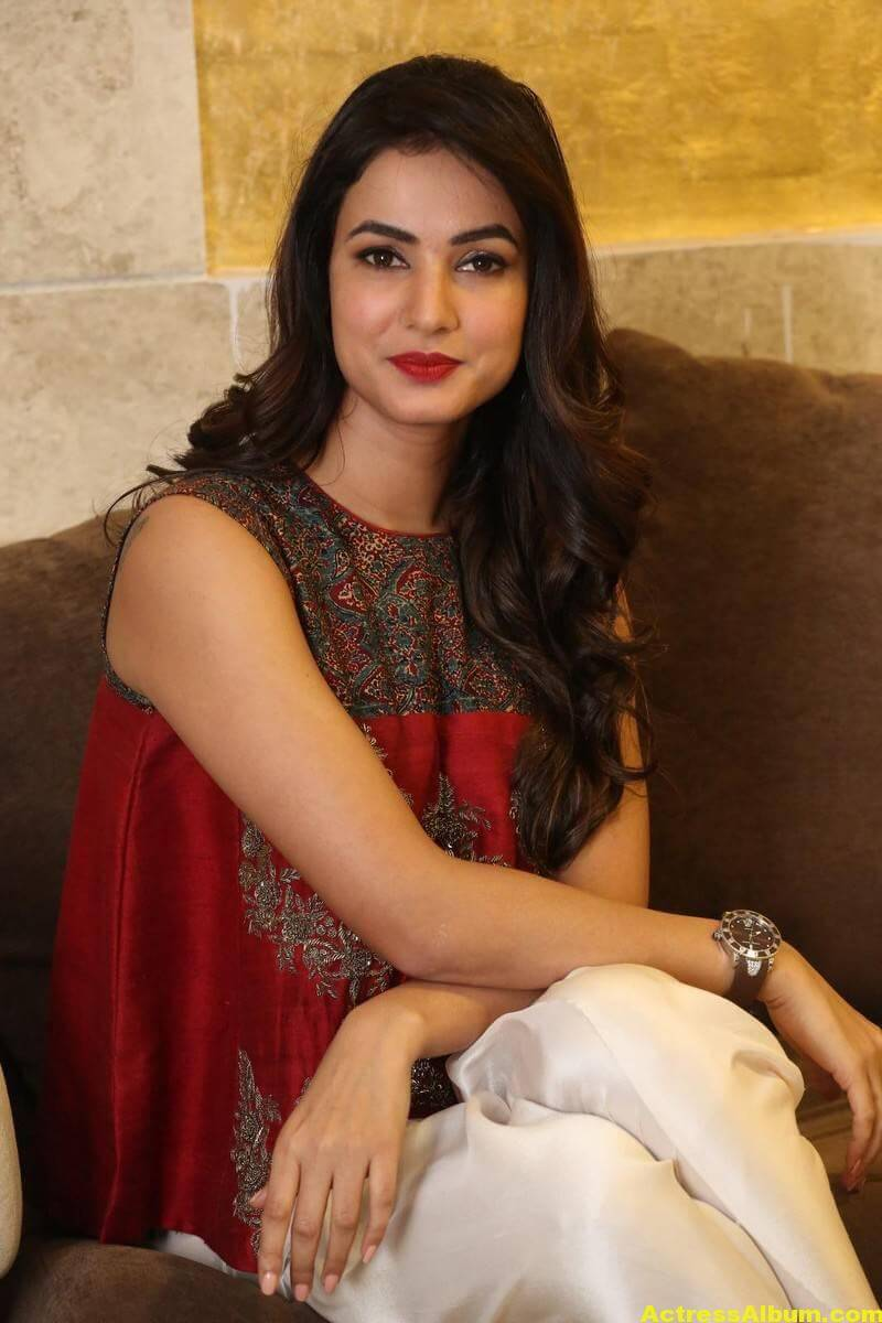 Sonal Chauhan Latest Stills In Beautiful Red Dress 8