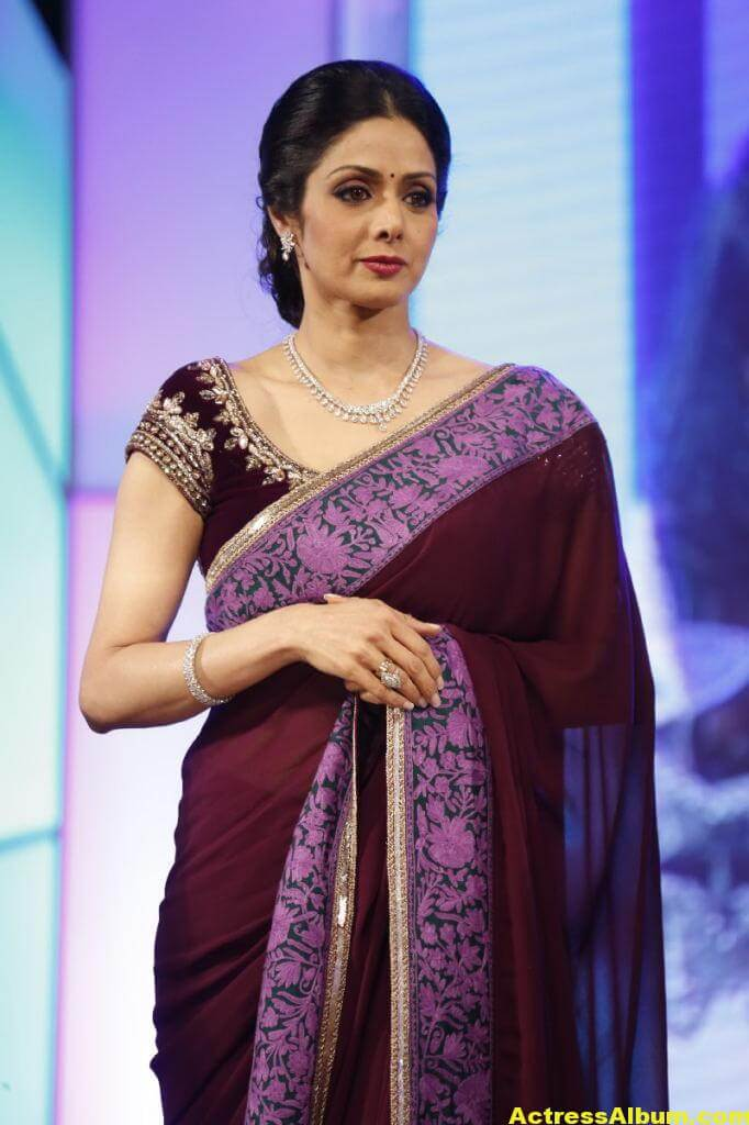 Sri Devi Latest Cute Stills In Colorful Maroon Saree 1