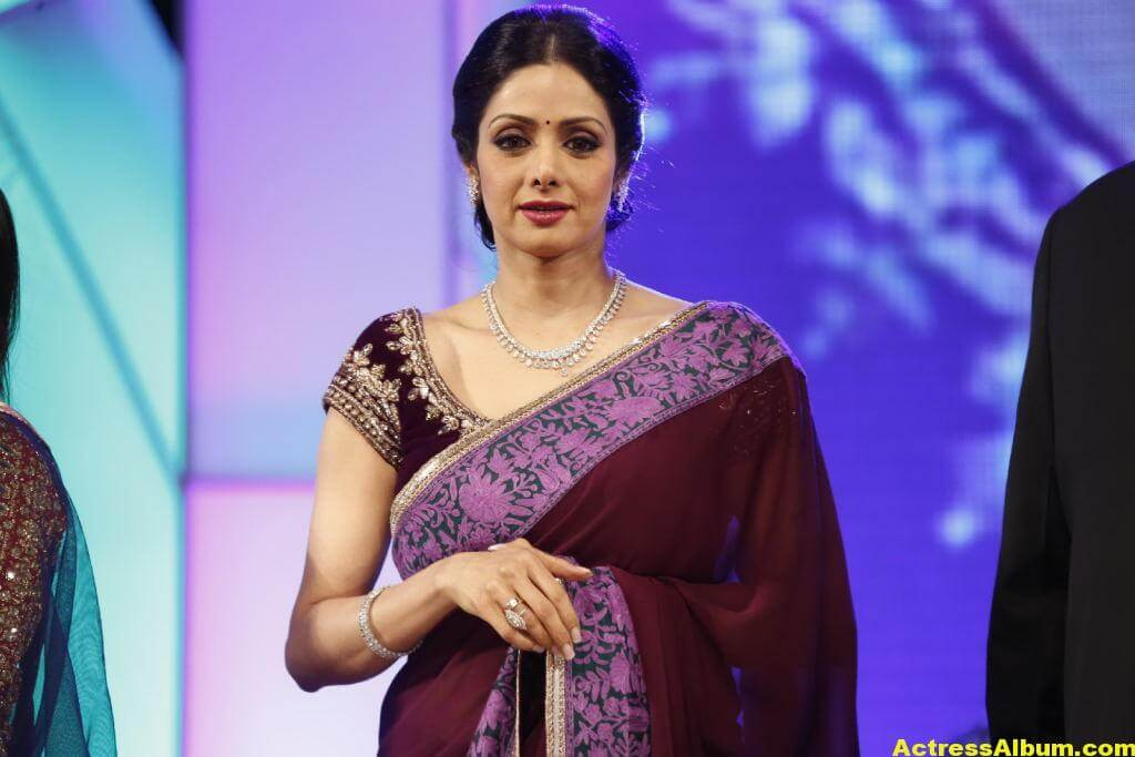 Sri Devi Latest Cute Stills In Colorful Maroon Saree 3