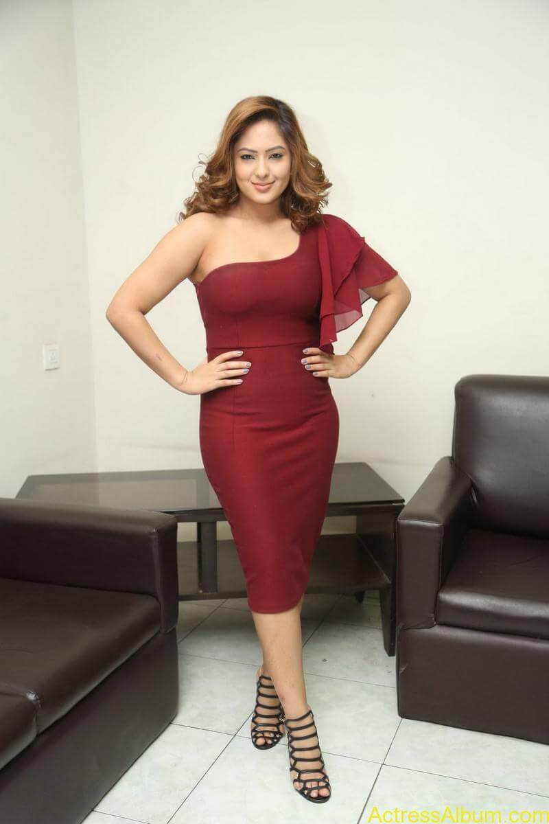 nikesha-patel-sizzling-stills-in-maroon-gown-3