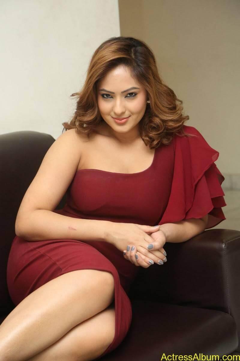 nikesha-patel-sizzling-stills-in-maroon-gown-4