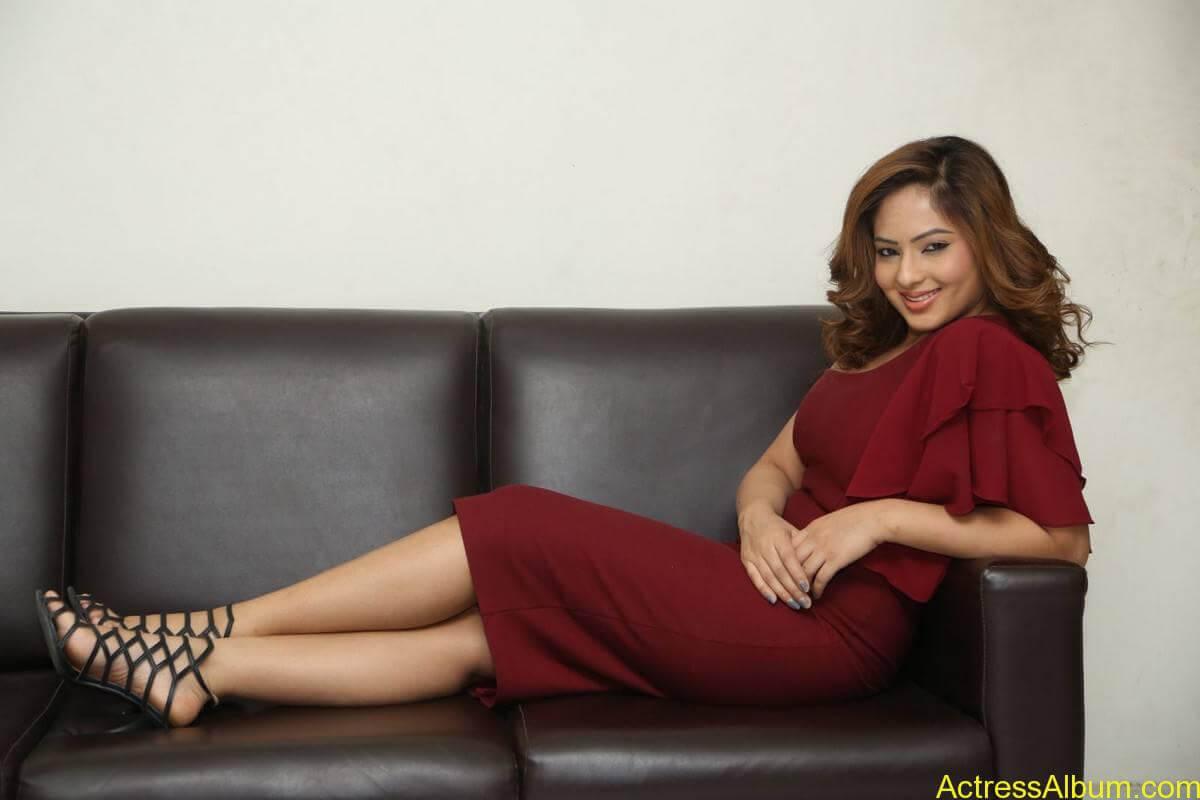 nikesha-patel-sizzling-stills-in-maroon-gown-5