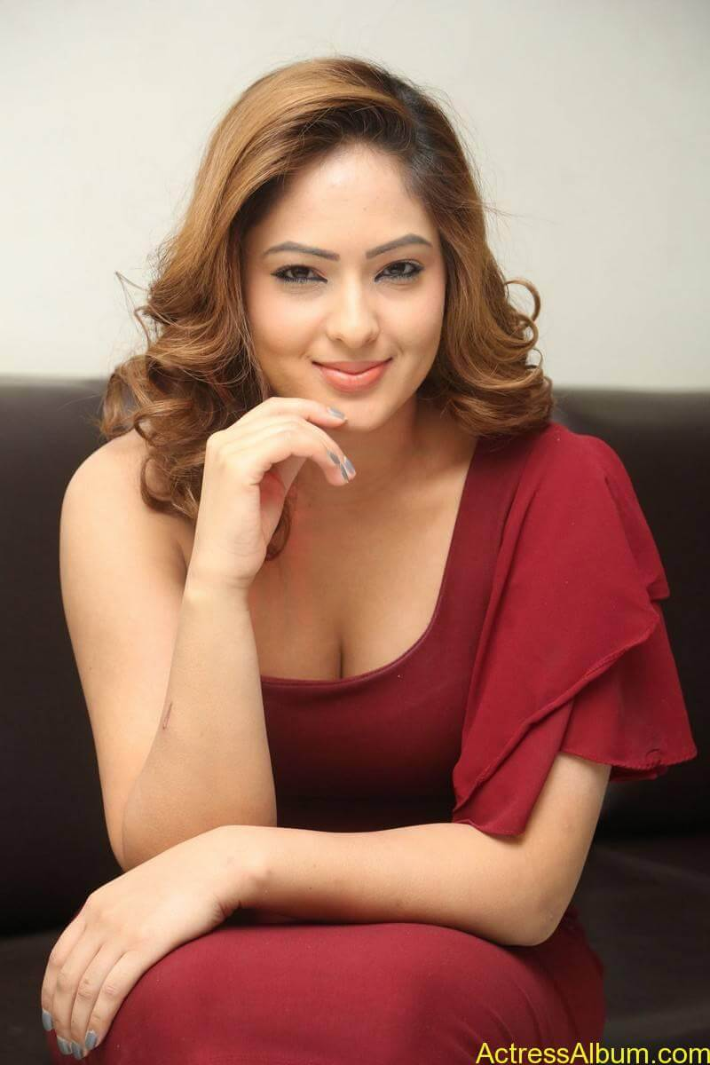 nikesha-patel-sizzling-stills-in-maroon-gown-6