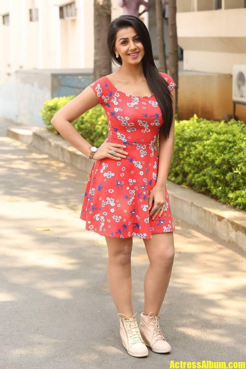 Nikki Galrani Latest Photos - Actress Album-4283