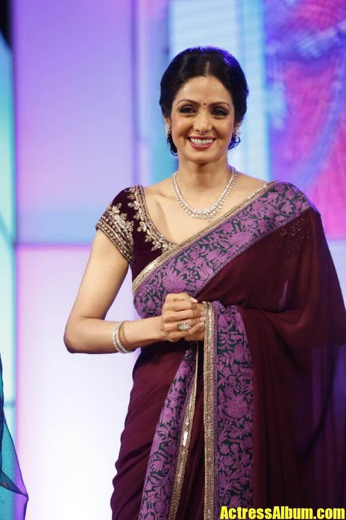 sri devi stills in colorful maroon saree