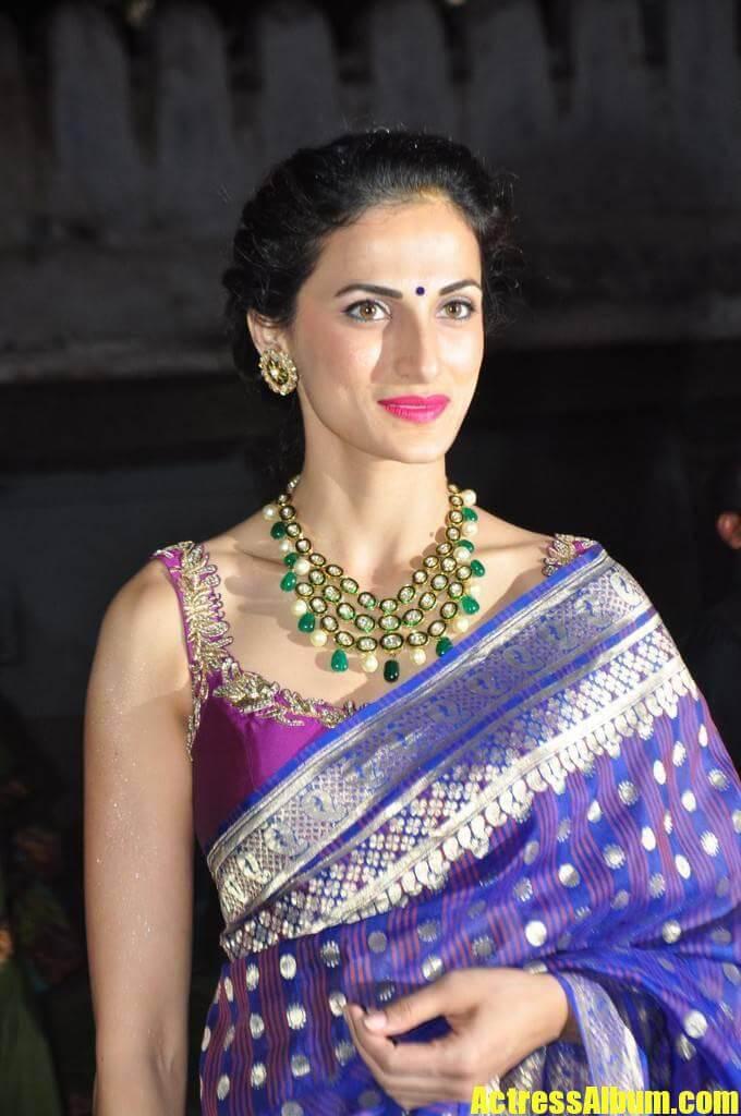 Model Shilpa Reddy Stills In Blue Saree Actress Album