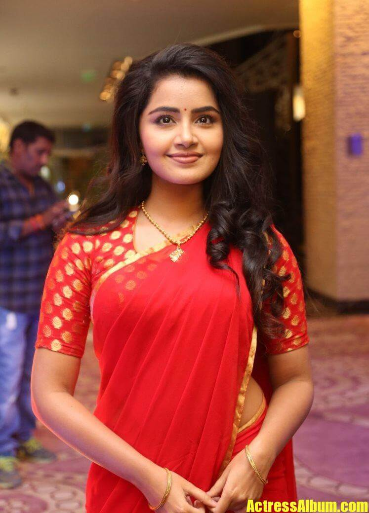 Tollywood Actress Anupama Stills In Red Saree - Actress Album-3554