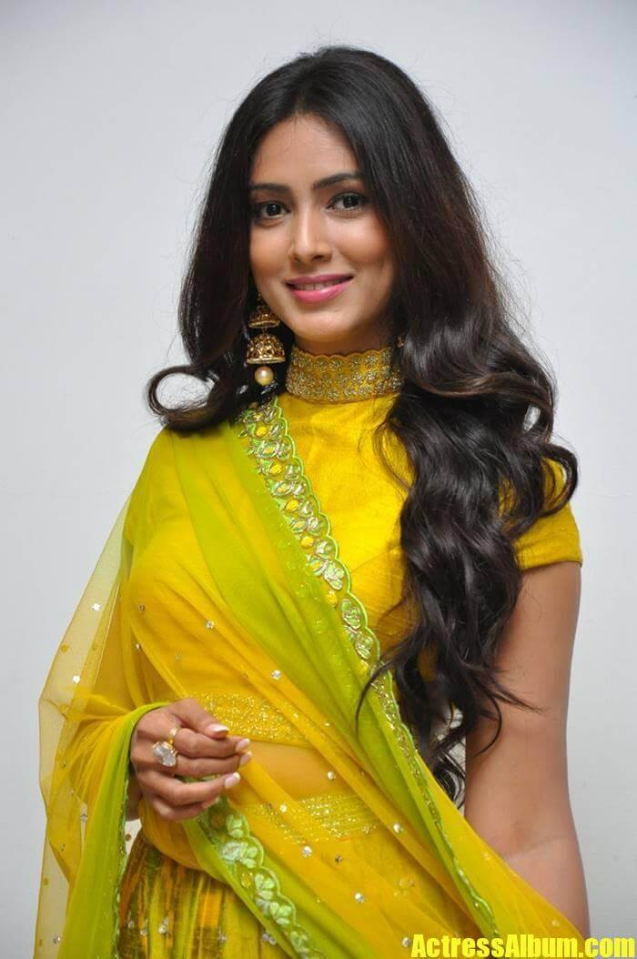 Pallavi Subhash At Naruda Donaruda Movie Audio Launch