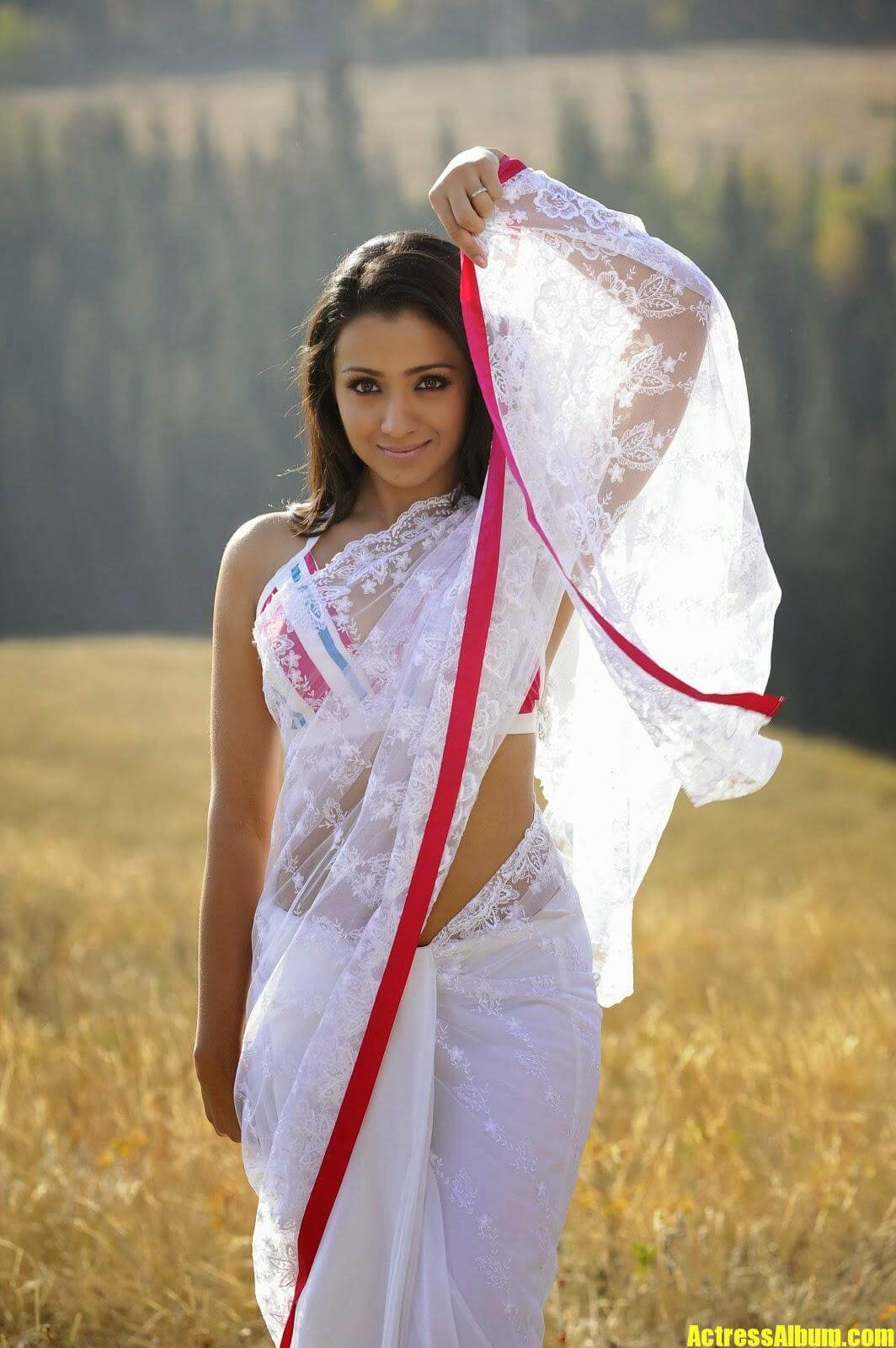 Actress Trisha Hot Navel Exposing In White Saree Photos