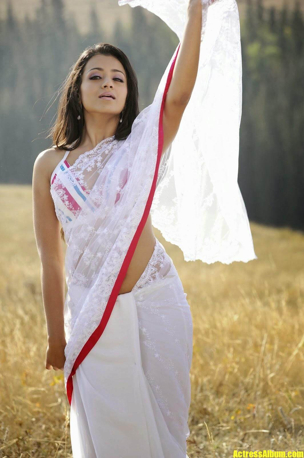 Actress Trisha Hot Navel Exposing In White Saree Photos-3320