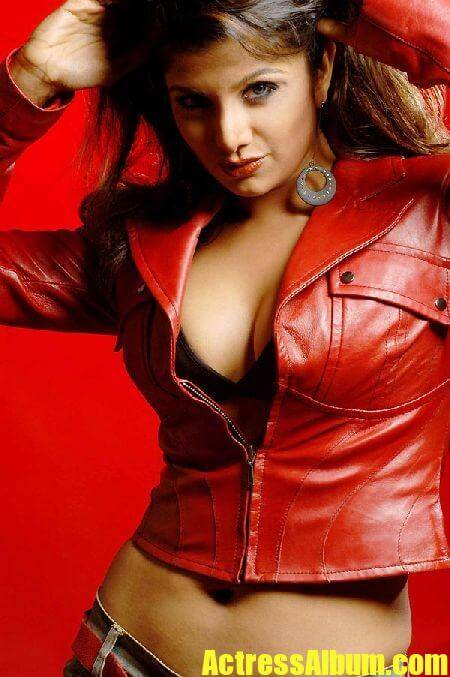 Rambha Hot And Sexy Photo Stills - Actress Album-5087