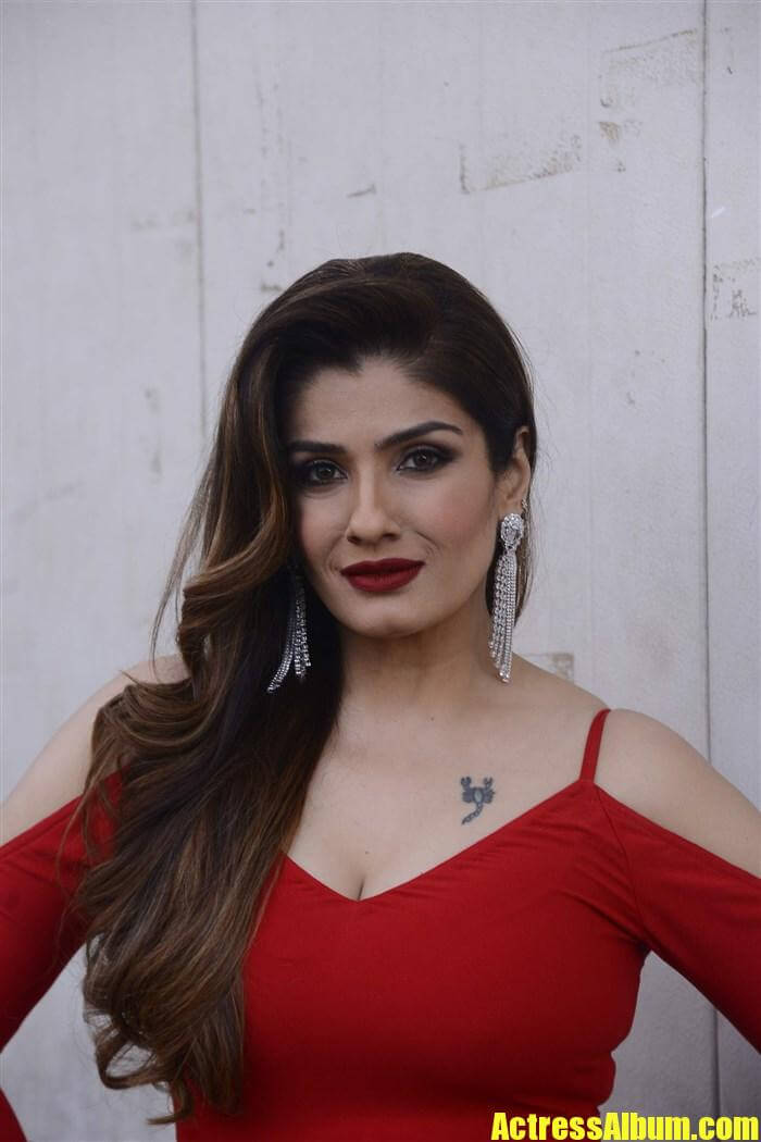 Raveena Tandon Red Dress Photos - Actress Album-2965