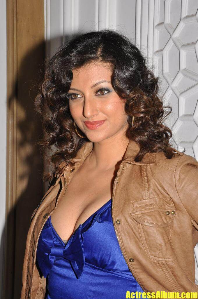 Tollywood Actress Hamsa Nandini Hot Expose Pics - Actress Album-6560