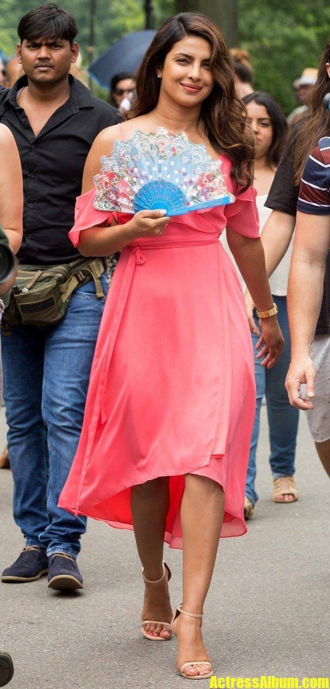 Priyanka Chopra In Pink Dress