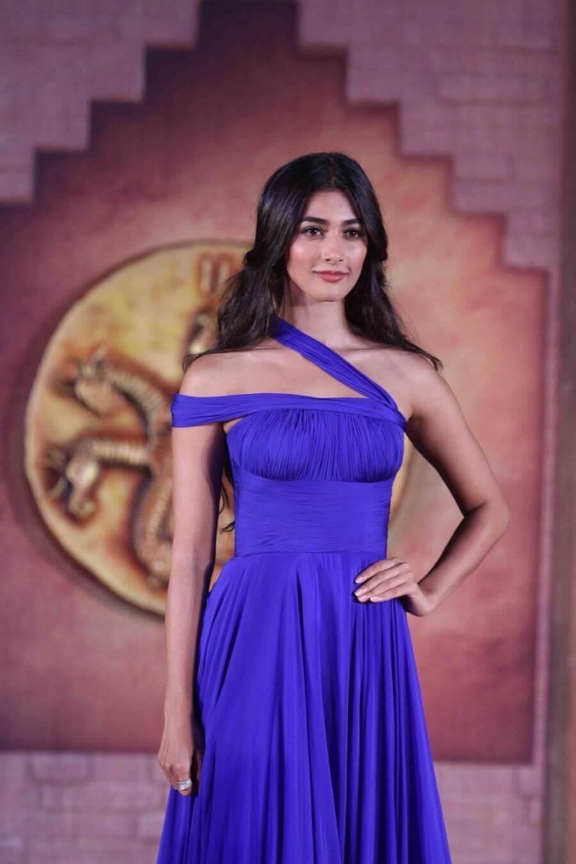 Indian Actress Pooja Hegde Hot Photo Shoot In Blue Dress -7492