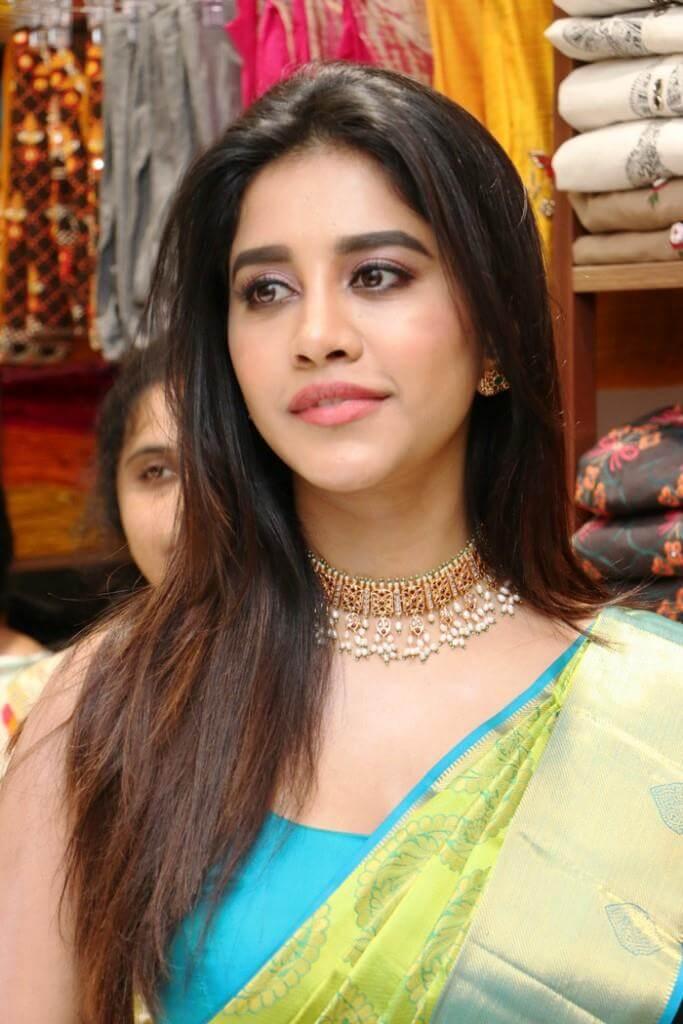 Nabha Natesh In Saree