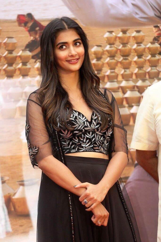 Pooja Hegde Exclusive Stills From Valmiki Movie