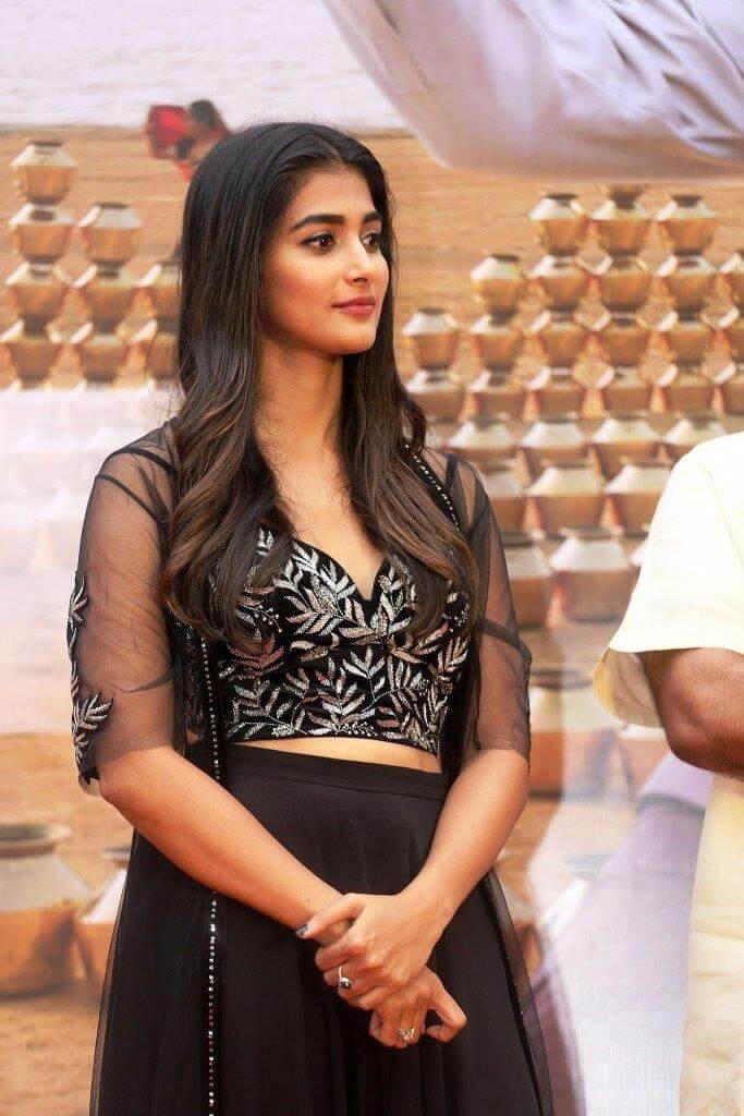Pooja Hegde Latest Stills From Valmiki Movie