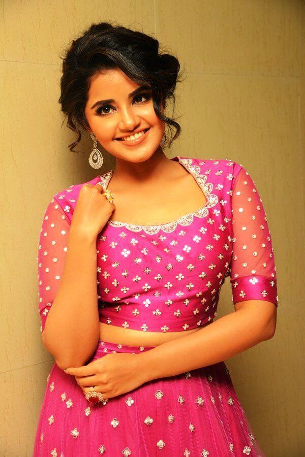 Anupama Parameswaran Photos At Rakshashudu Movie Pre-Release