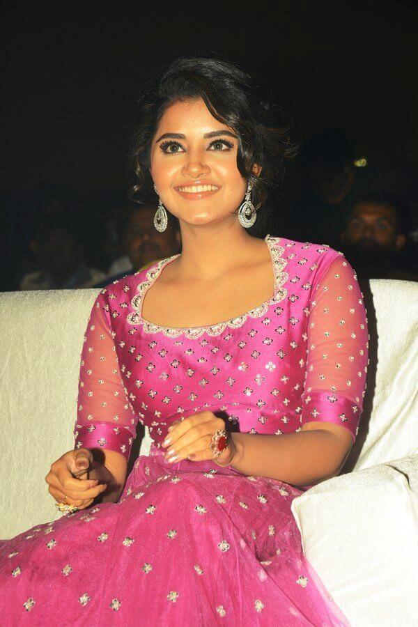Anupama Parameswaran Photos From Rakshashudu Movie