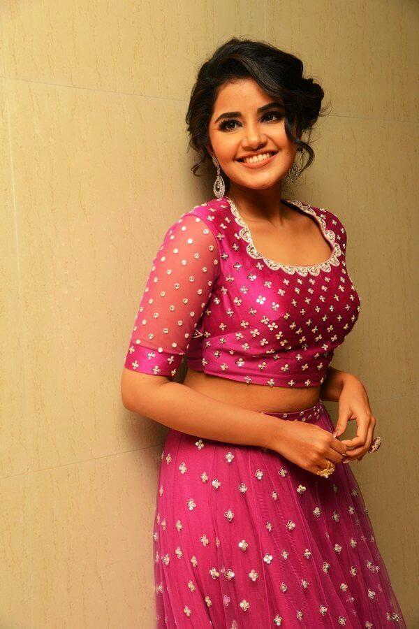 Anupama Parameswaran In Pink Dress