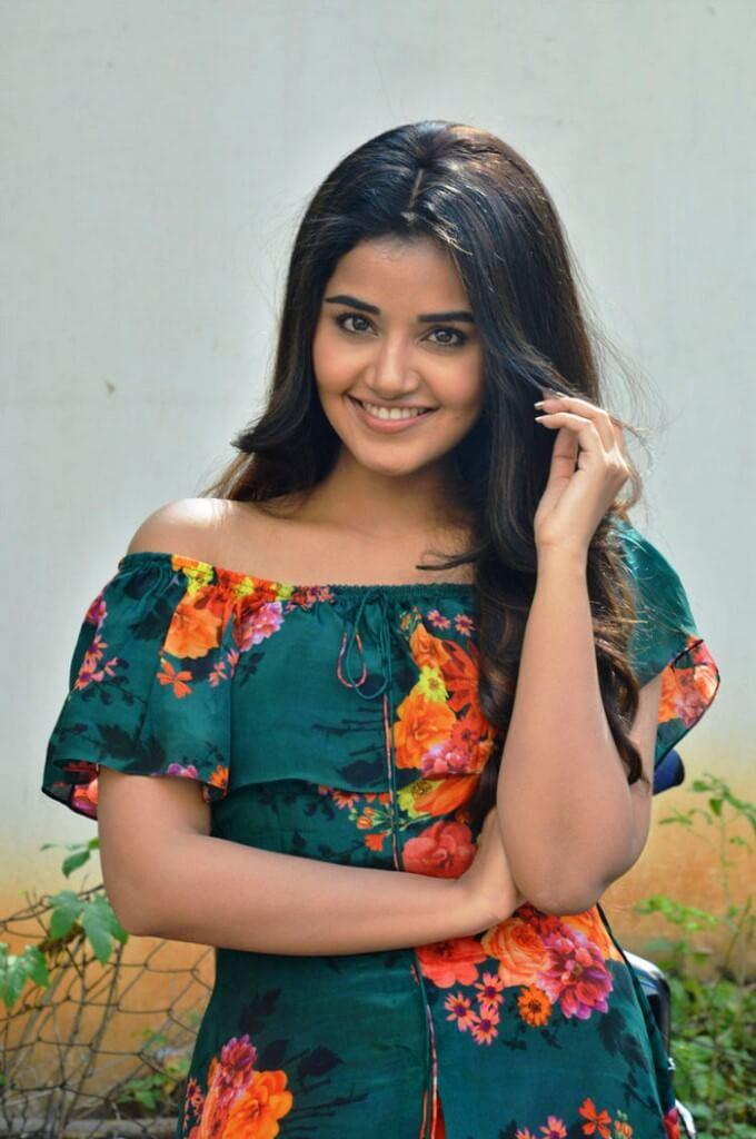 Sathamanam Bhavathi Movie Heroine