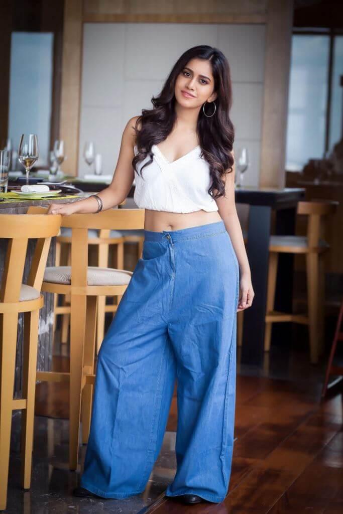 Hot Beauty Nabha Natesh