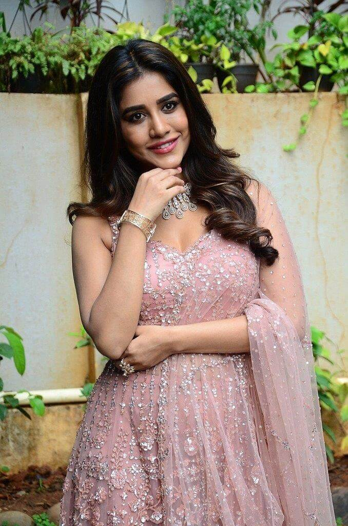 Nabha Natesh Movie Launch