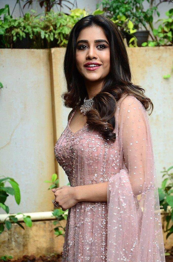 Nabha Natesh In Pink Dress