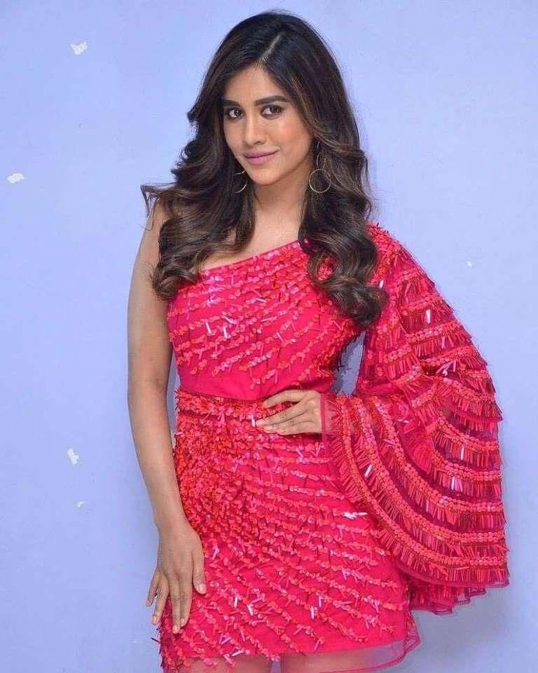 Nabha Natesh At Song Launch