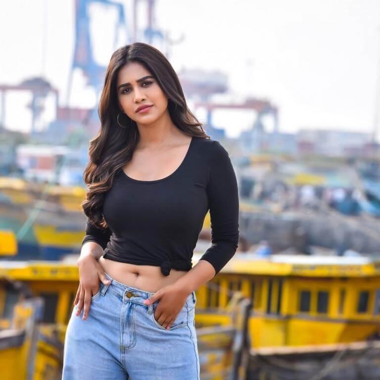 Nabha Natesh Navel Photoshoot Stills