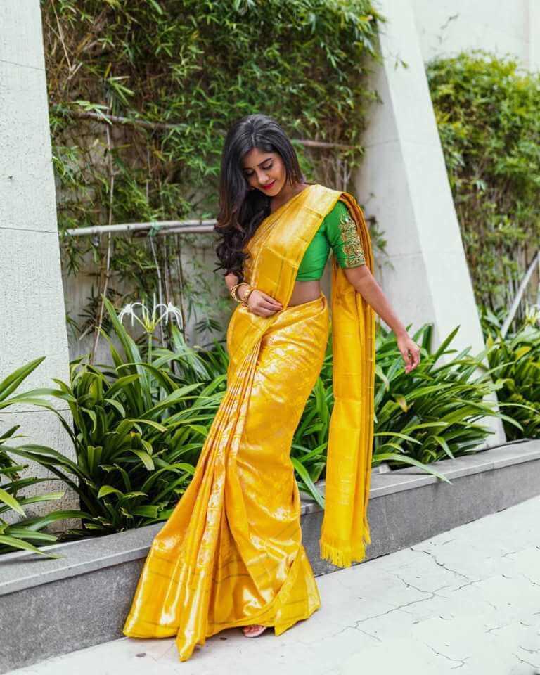 Ismart Shankar Movie Heroine